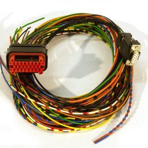 IA23 basic loom